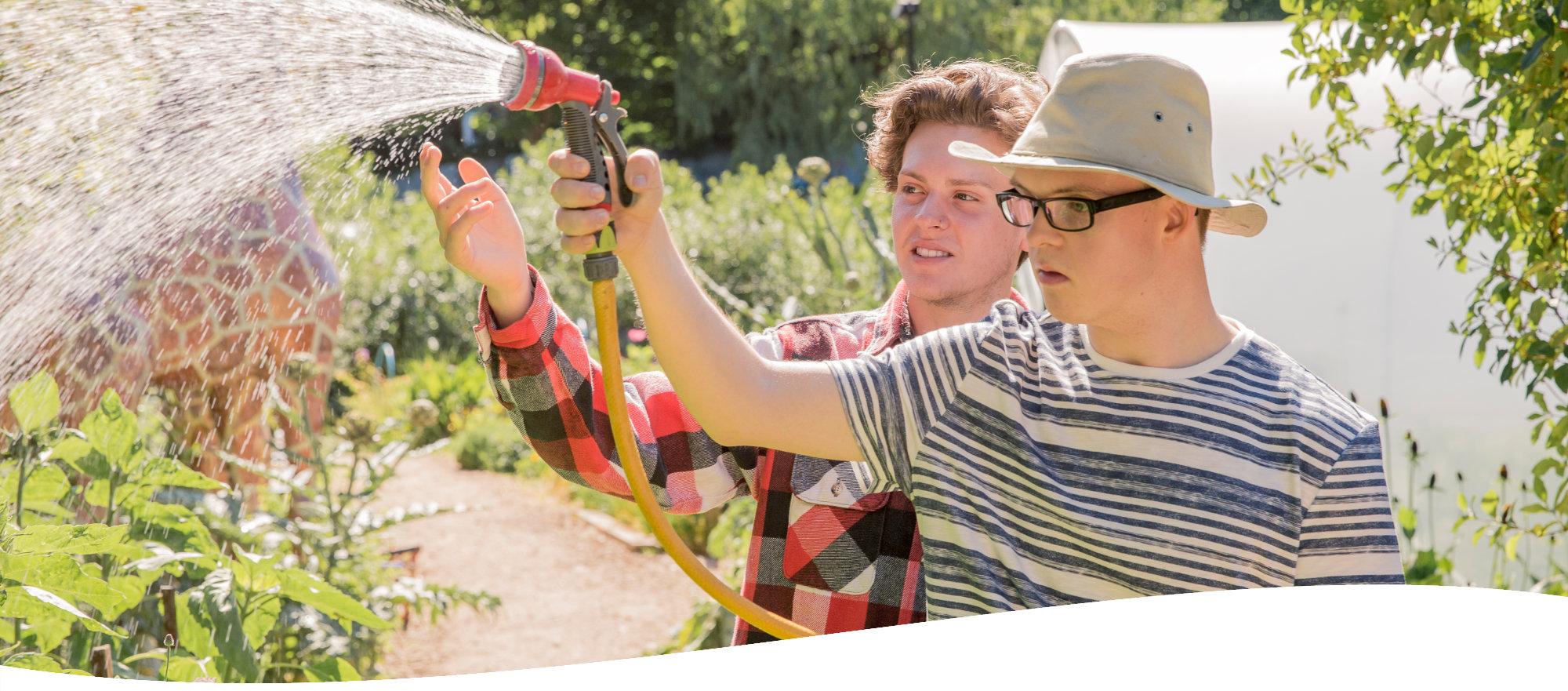 Two men watering plants